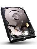 Seagate Barracuda 2TB (ST2000DM001)