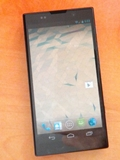 Is This the Sony Nexus Phone?