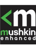 Mushkin Presents Its Entire Lineup of Next Gen Products at CES 2013