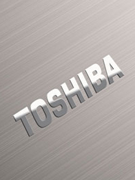 Toshiba Completes OCZ Asset Acquisition, Launches OCZ Storage Solutions