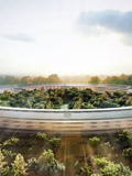Drone gets a sneak peak at Apple's under construction 'Spaceship' campus