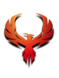 The Pirate Bay re-emerges 7 weeks after police raid
