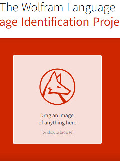 Wolfram's new project is an image-identifying website