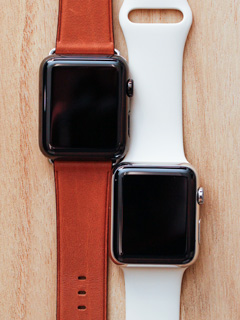 The 27 possible looks of the Apple Watch, with its band combinations