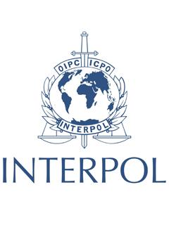 Interpol arrests mastermind of Nigerian online scams worth US$60 million