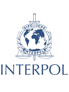 Interpol arrests Nigerian online scams mastermind that swiped over US$60 million