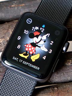 Apple still dominates the global smartwatch market