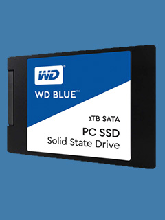 Western Digital releases its first SSDs for consumers