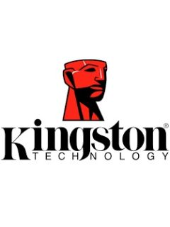 Kingston has one of the highest market share in the SSD segment