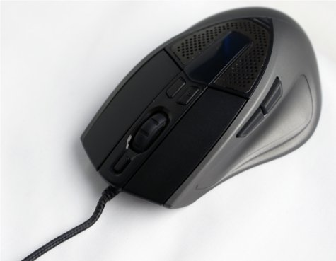 The OLED display is nestled between the top button which manages profiles and the bottom two buttons which control mouse sensitivity.