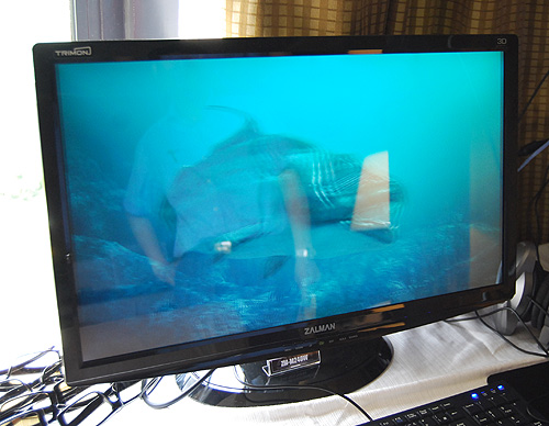 Not wanting to be left out of the 3D bandwagon, Zalman also had a 24-inch 3D monitor on display.