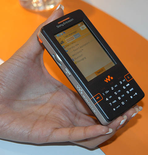 The W950 looks like the newly released M600. The notable feature of this phone is its touch sensitive display and 4GB of solid-state memory for all music and photo storage needs.