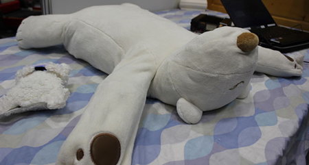 The Jukusui-Kun comprises of two bears. The larger one functions as a pillow  while the smaller one is a pulse oximeter. (Source: japantrends.com)