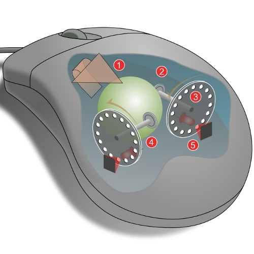 Instead of using two wheels this mouse uses a ball that allows its to roll in any direction