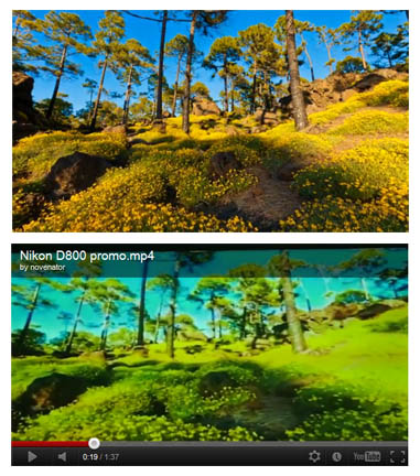 Here's are screen captures of similar looking clips in the two videos. The above is the original and can be seen at the 2:12 mark in the embed of The Mountain below. The below is from the Nikon D800 launch and can be seen at the 0:18 mark in the embedded video below.