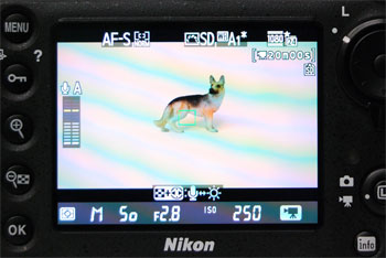 The Live View screen for video shows relevant info without cluttering the screen (the flicker is a result of our photography and does not appear on the actual product).
