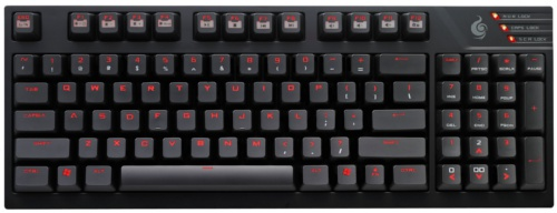 The TK integrates a numpad block, 7 easy-access multimedia shortcut keys, a Windows lock key (F12), and a Fn lock key.