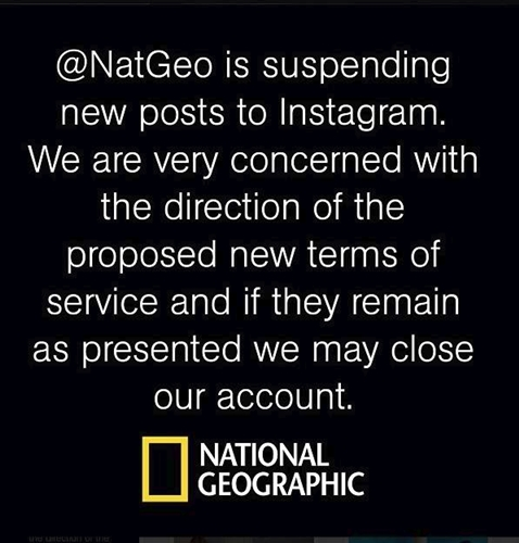 "The ""misconstrued"" terms has also seen big names like National Geographic pulling all stops on their account. (Source: Instagram, @NatGeo)"