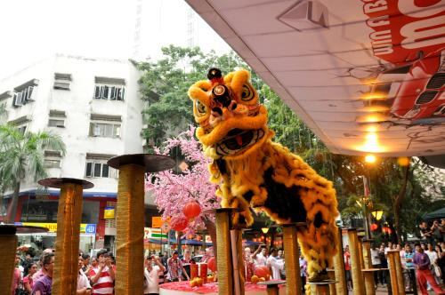 One of the 'Lions' performing during the Lion Dance