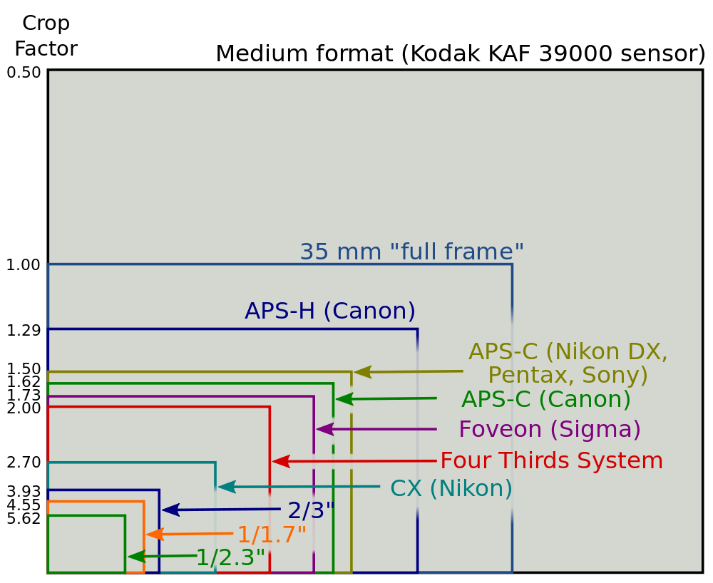 This chart from Wikipedia gives you an idea of the various sensor sizes available in digital cameras today.