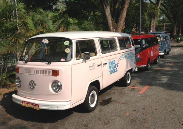 An unusual sight on our sunny island, brightly-colored Kombi vans awaited our members on a fine Saturday morning.