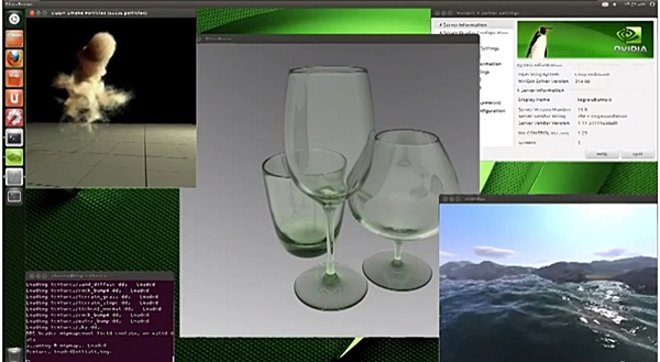 A screenshot of the Ubuntu OS-based Kayla system that was running programs that showcased its support for CUDA, OpenGL and PhsyX implementations.