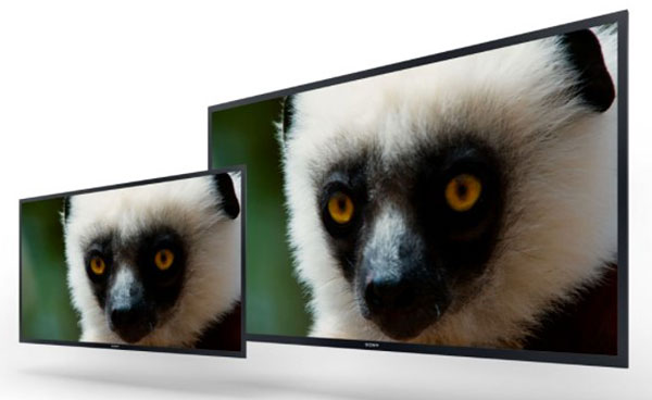 For video engineers, Sony is hard at work developing large-screen 4K professional OLED monitors. (Image source: Sony.)