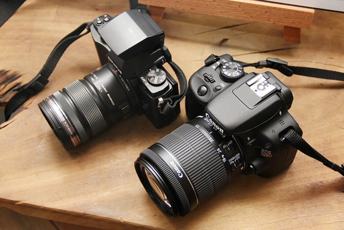 The Canon EOS 100D is small for a DSLR. While it's thicker than the mirrorless Olympus OM-D E-M5 camera, it's only slightly taller than the E-M5 with its flash attached and is lighter.