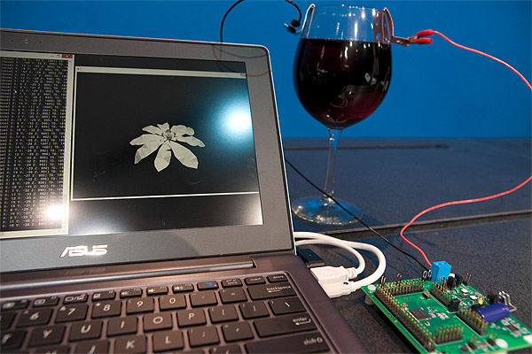 Demonstration of an experimental low power microprocessor powered by red wine.