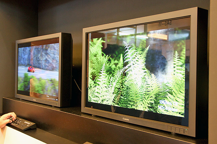 Canon DP-V3010 4K reference display uses an IPS LCD panel with a Canon-designed RGB LED backlight system.