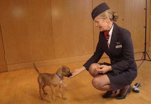 Source: British Airways (YouTube)