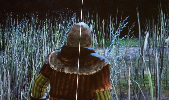 NVIDIA's presented a close-up split-screen of Dark Souls II rendered on a 1080p display without DSR and with DSR (right). You can immediately see the difference in the quality of the blades of grass has improved quite drastically.