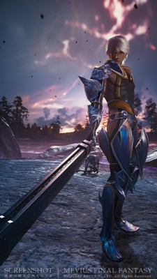 Armored swimsuit is probably one of the best ways to describe this. <br> Image source: USgamer.