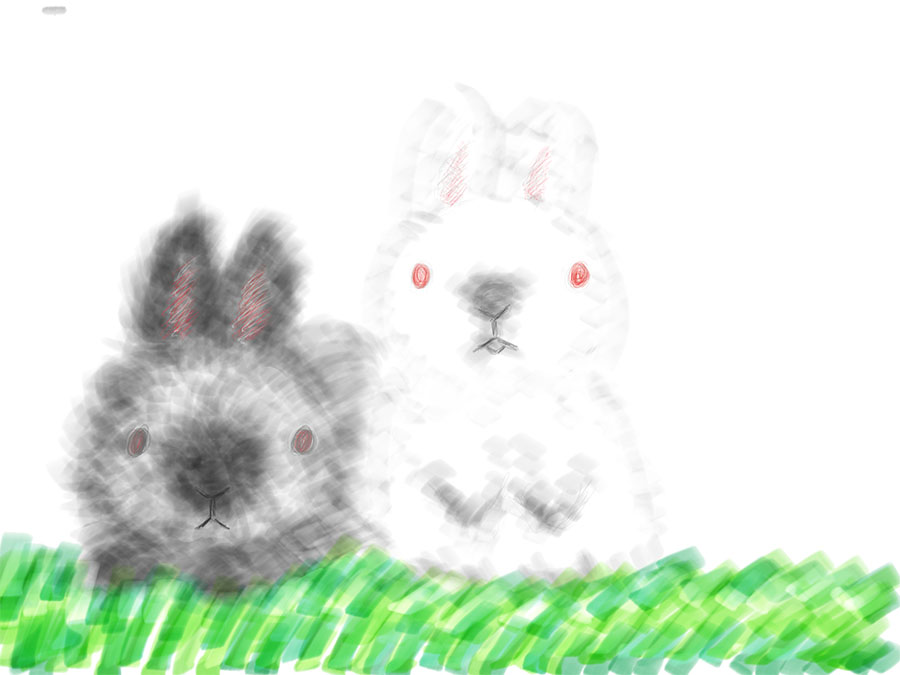 Here's a drawing by my fiancée of our two bunnies. Note the use of shading and the variation between soft and hard lines.