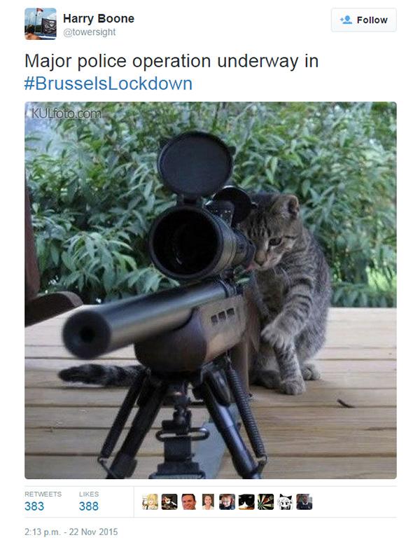 Got him in my sights, sir!