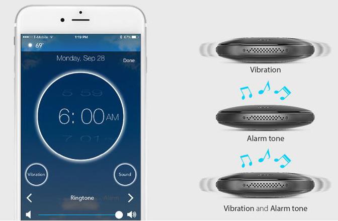 Vibrating Pillow Alarm Clock Sonic Alert Sbp100 Sonic