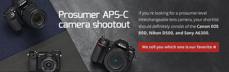 Prosumer APS-C camera shootout: Canon EOS 80D vs. Nikon D500 vs. Sony A6300