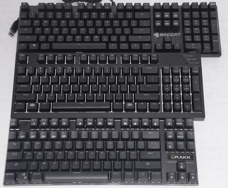 From the top: Roccat Suora (Fully 104 ANSI layout), Cooler Master MasterKeys Pro M (90 percent), EASYPC Rakk Kimat (Tenkeyless)