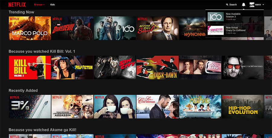 Netflix aims to serve up a diverse mix of shows that is catered to your preferences, yet still allows for the discovery of new content.