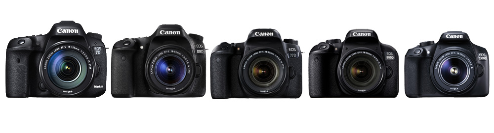 From L to R: EOS 7D Mark II, EOS 80D, EOS 77D, EOS 800D, EOS 1300D