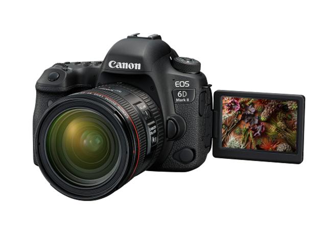 canon, digital image, photography, photomarathon, canon eos 200d, canon eos 6d mark ii, dslr camera