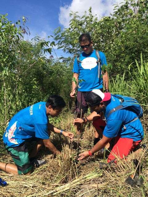 bike, bike.hike.plant 2017, denr, department of environment and natural resources, globe, globe telecom, pamapanga, tree, tree-planting