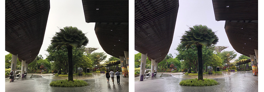 Whereas previous iPhones had a habit of underexposing subjects, even in HDR mode (left), the iPhones 8 (right) are more intelligent about exposing the subject correctly.