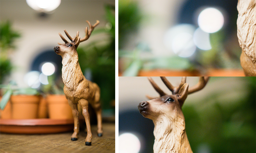 Here's a quick comparison between the 'feathered bokeh' and 'non-feathered' look. This was shot at f/1.2, with close-ups on the specular highlights and the leaves in the background.