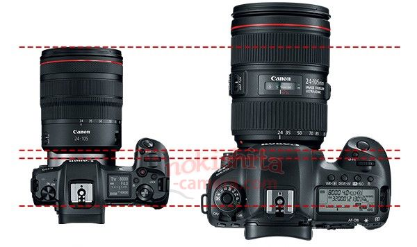 The EOS R compared to what looks to be a 5D.
