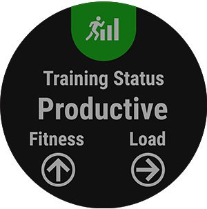 Training Status lets you know if your current program is increasing your fitness or not.