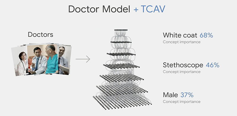 TCAV makes it easier to view an AI's decision-making process in terms of higher level concepts. (Image Source: Google)