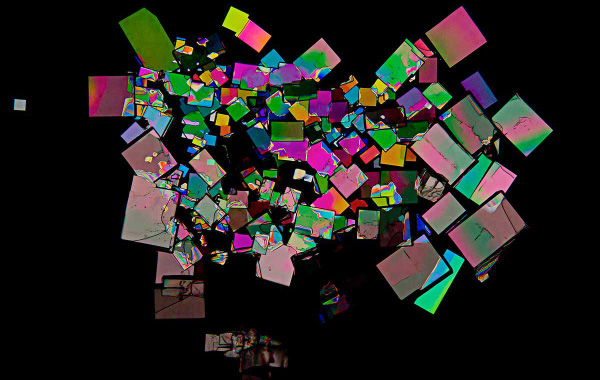 Crystals of creatine phospate, a metabolite that is similar to those use to store digital data. (Image source: New Scientist)