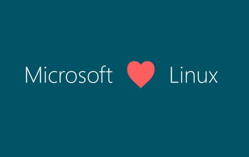 (Image: Microsoft.)