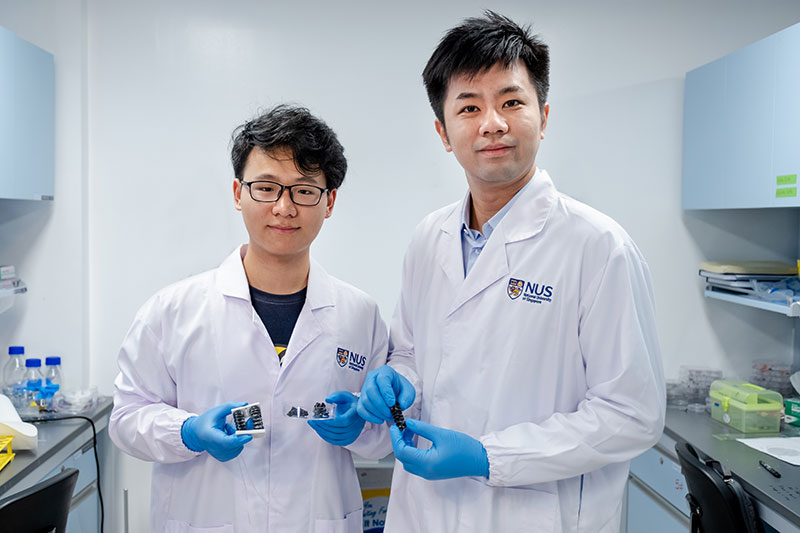 NUS Assistant Professor Chen Po-Yen (right) and doctoral student Yang Haitao (left) and their team created a new metallic material for soft and flexible robots. (Image Source: NUS)